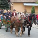 Święto Kwitnącej Jabłoni 2013-10