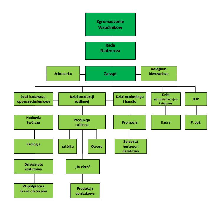 Schemat organizacyny